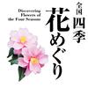 全国四季花めぐり|行ってみたい花の名所&絶景スポット