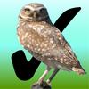 Birdwatcher's Diary - Stevens Creek Software